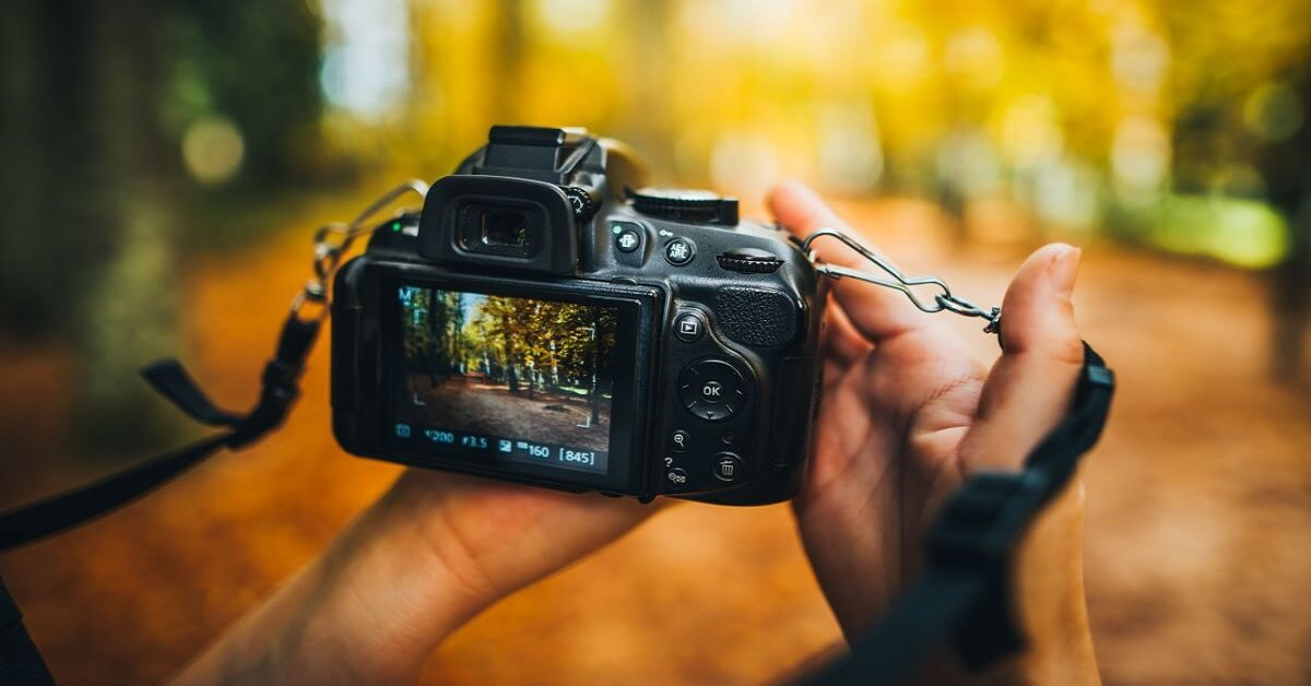 Best cameras for nature and wildlife photography