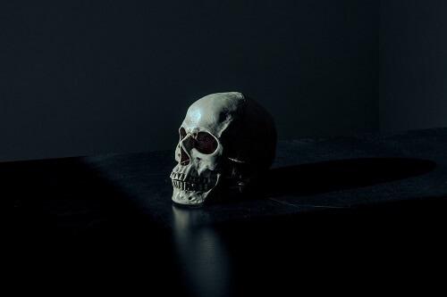 fake skull 1