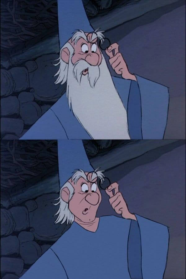 Merlin the Magician from The Sword in The Stone