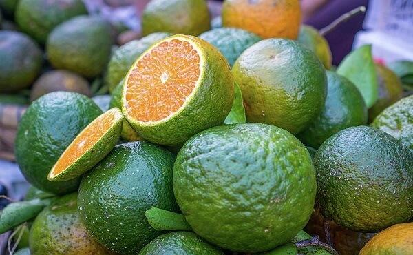 Not all oranges are actually orange