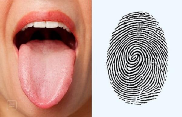 tongue prints
