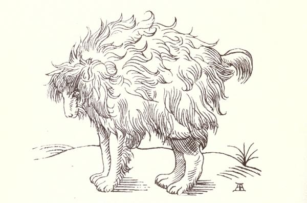 Mimic Dog