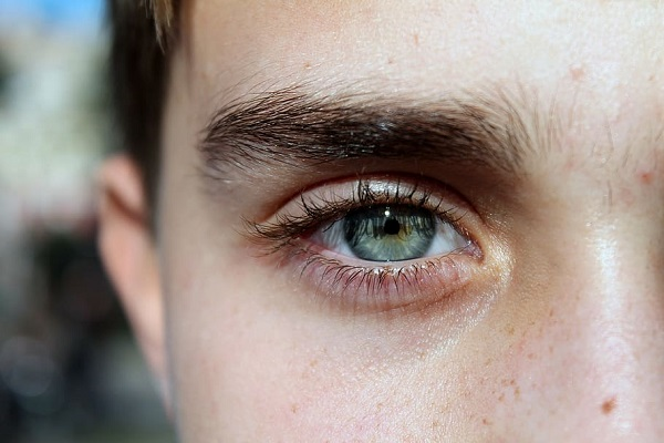 A few facts about Eyelashes