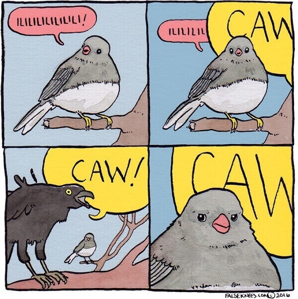 What exactly are screaming crow memes
