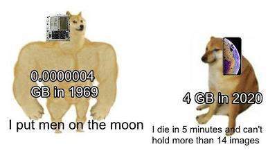 dog vs cheems