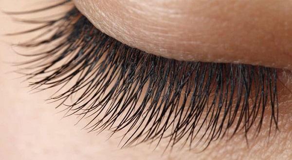 eyelash structures
