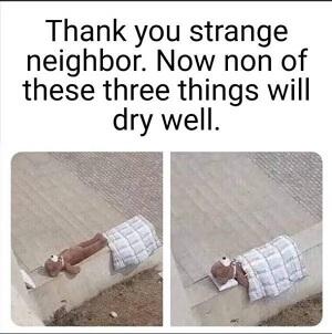 Caring neighbor