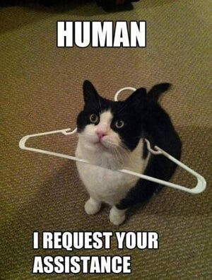 Importance of human