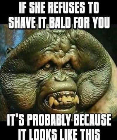 shave bald