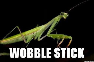wobble stick
