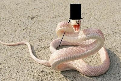 professor hat